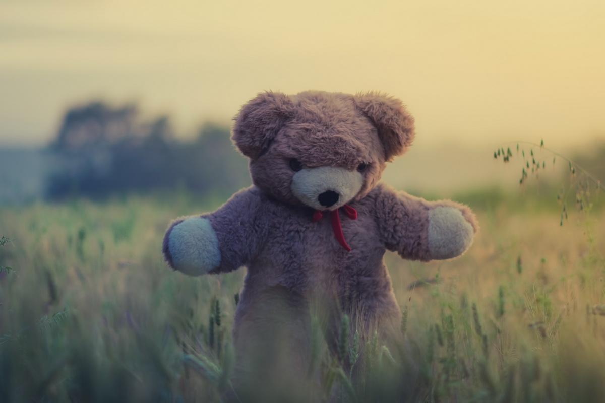 De la iubire la despărțire…O poveste despre jucăriile mele de pluș din copilărie_urs de plus