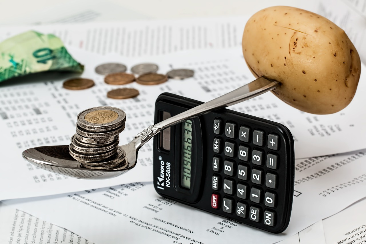 Frugalitatea – o nouă temă pe blog_economii
