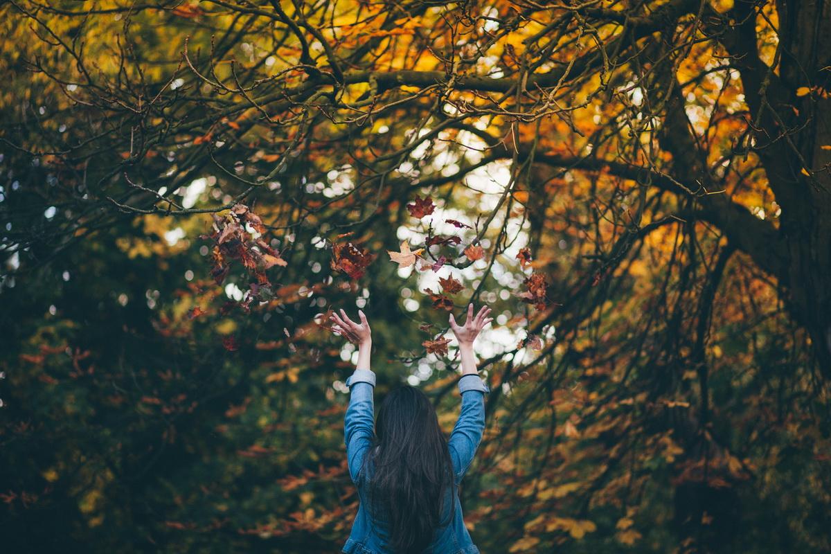 Bucuria lucrurilor simple(5)_frunze de toamna
