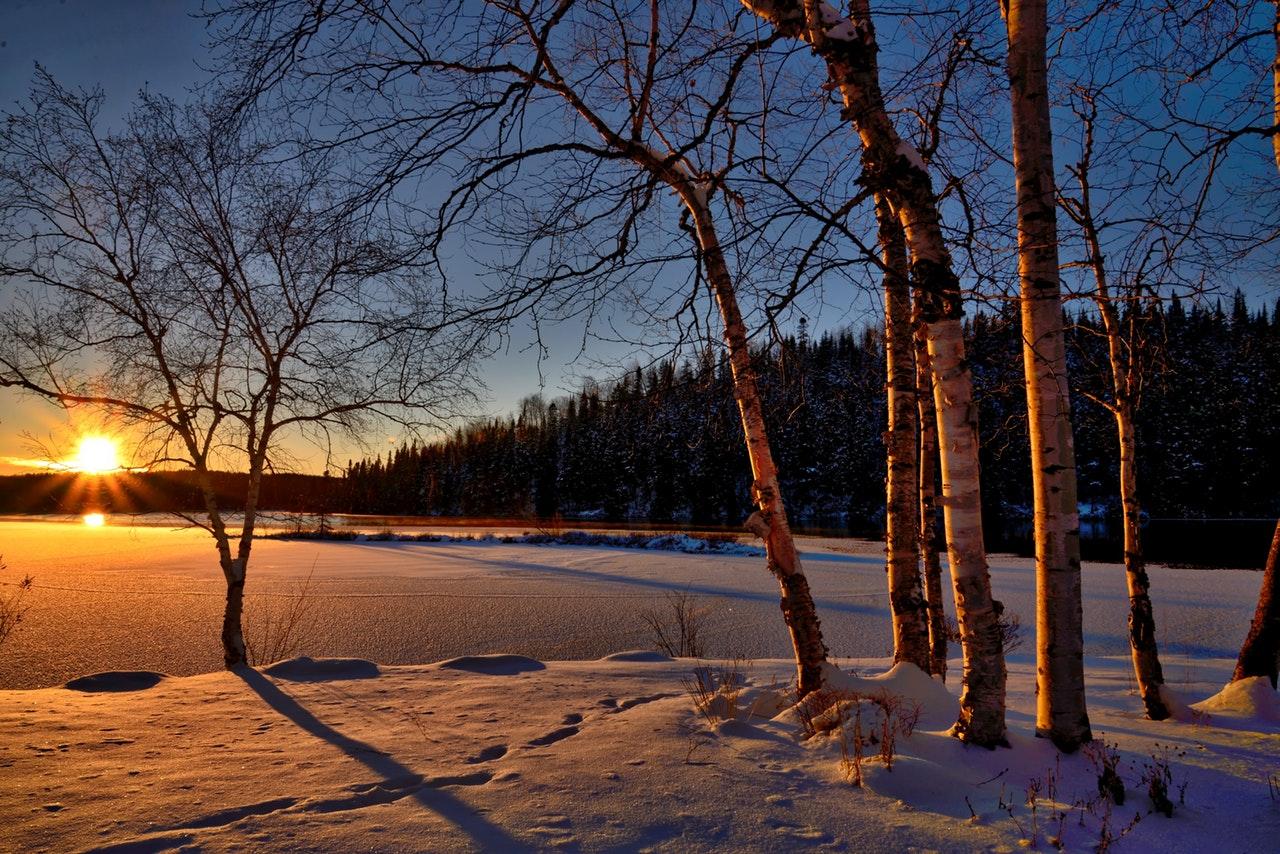 Săptămâna în care am plâns de bucurie, dar și de ușurare_soare de iarnă