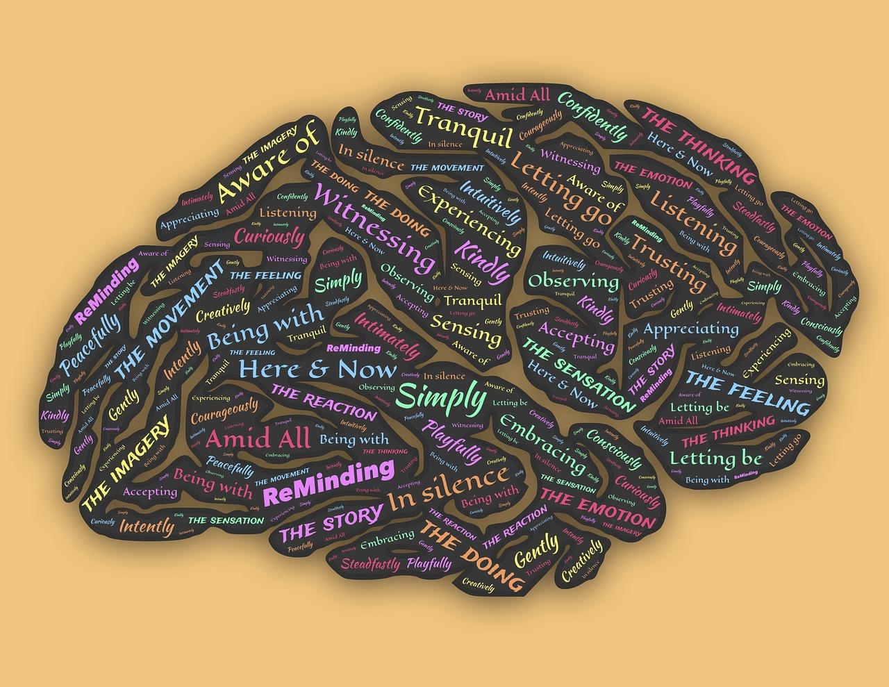[Exercițiu] 35 de lucruri consumatoare de timp la care aș renunța…_imagine cu reactiile din creier