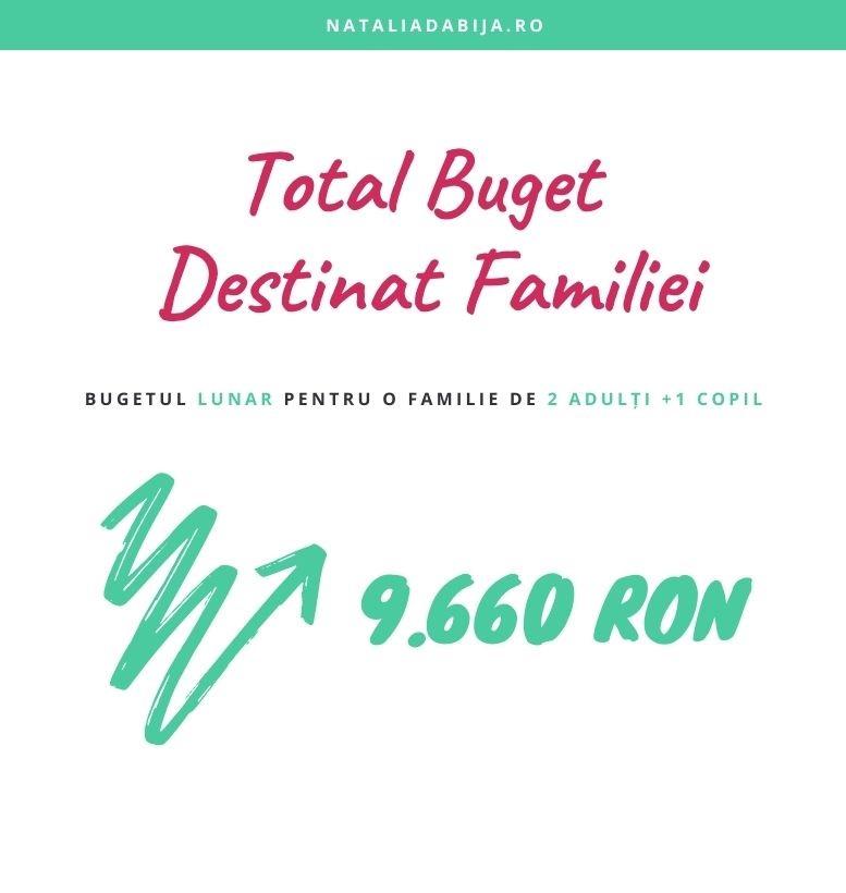 Bugetul familiei este de 9660 Ron.